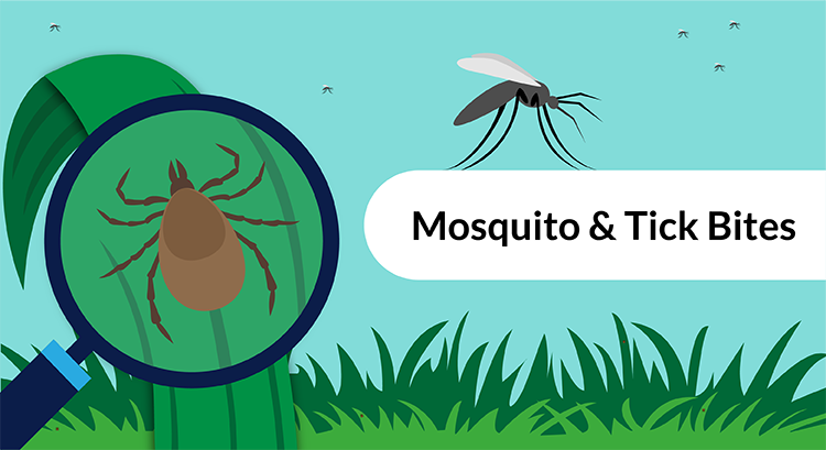 Protecting kids against mosquitoes and ticks